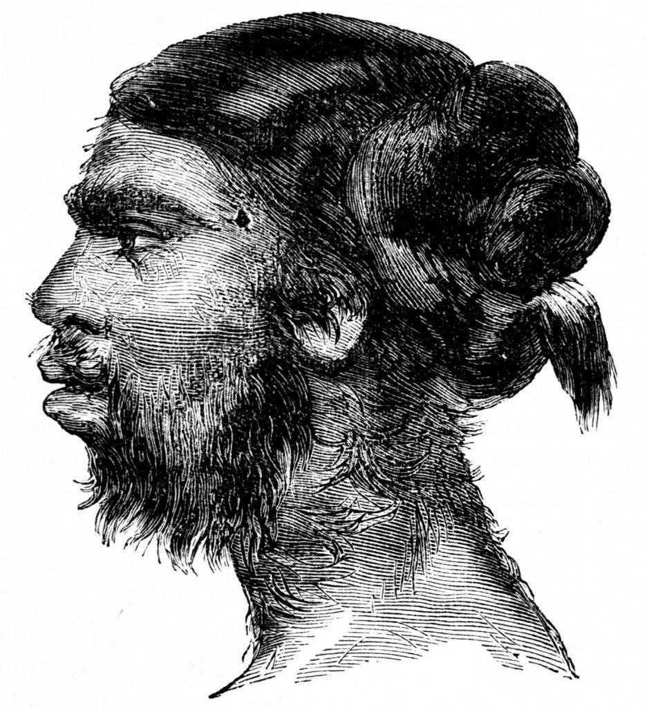 mulher macaco