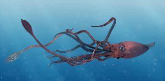 Ilustração de uma lula colossal em alto-mar